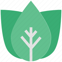 ecology, flower, freshness, natural, nature icon
