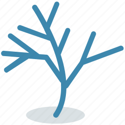 botany, growing plant, plant, sapling, seedling, young plant icon