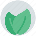 biology, environment, freshness, leafs, organic, plant icon