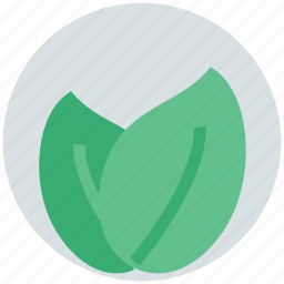 biology, environment, freshness, leafs, organic, plant icon