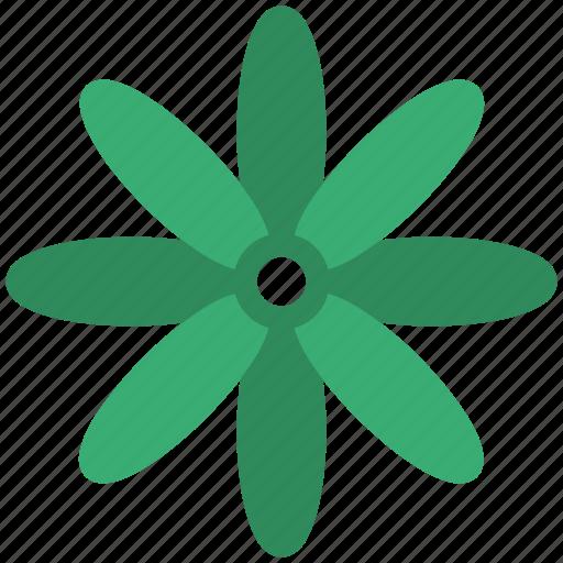 Bluestar, flower, puschkinia, puschkinia flower, puschkinia libanotica, spring flower icon - Download on Iconfinder