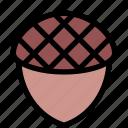 acorn, food, hazelnut