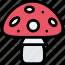 food, mushroom, natural, organic, vegetable