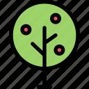 ecology, garden, nature, plant, tree