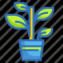 botanic, environment, gardening, nature, plant icon