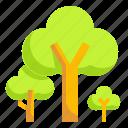 botanical, ecology, nature, tree icon