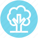 ecology, environment, green, natural, nature, park, tree icon