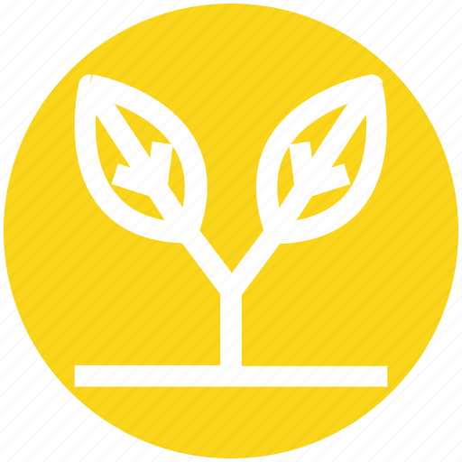 Eco, ecology, environment, flower, grass, leaf, nature icon - Download on Iconfinder
