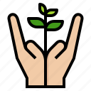 care, ecology, forest, hand, plant