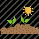 gardening, growing, seed icon