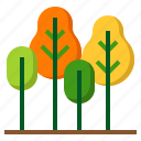 ecology, forest, grow, plant, tree icon