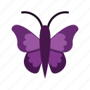 butterfly, insect, moth, summerbird icon