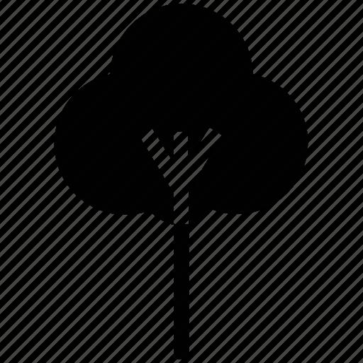 bud, cotton, cotton plant, crop, field, flower, nature icon