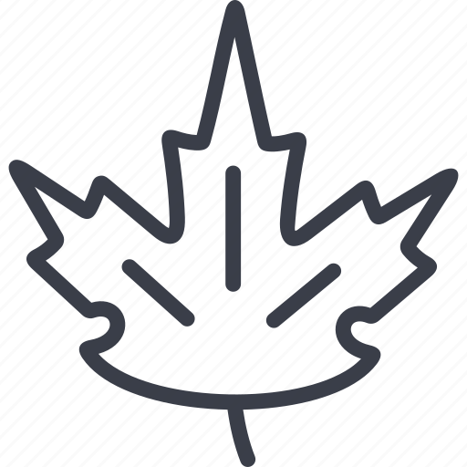ecology, greenery, maple leaf, tree icon