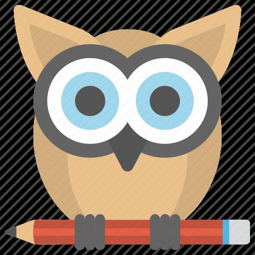 creative owl, education, knowledge, owl with pencil, wisdom icon