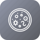 bacteria, bacterium, cell, find, search icon