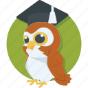 graduation, learning, owl, study, wisdom icon