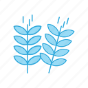 leafs, nature, plant icon