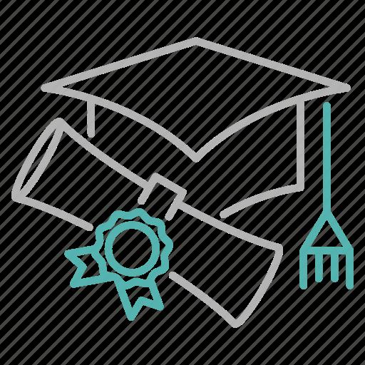 diploma, education, graduation, learn, school, study icon