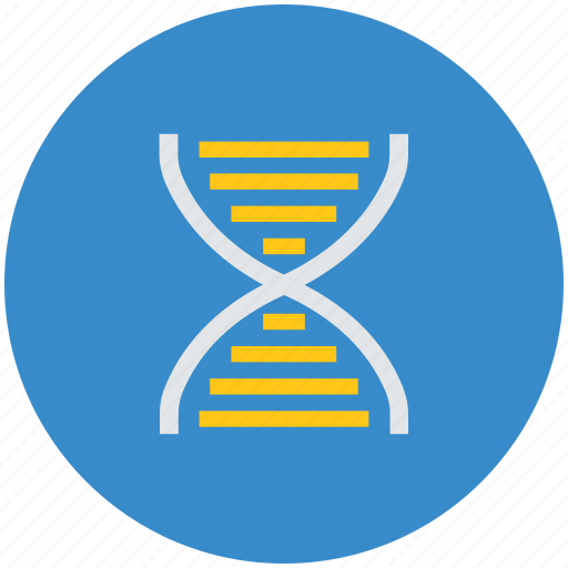 Biology, dna, dna chain, helix, helix string, medical icon - Download on Iconfinder