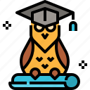 animal, education, graduate, hat, owl