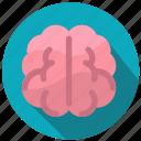 brain, head, mind, thinking