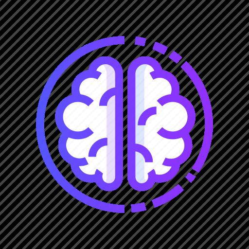 Brain, brainstorming, idea, mind, thinking icon - Download on Iconfinder