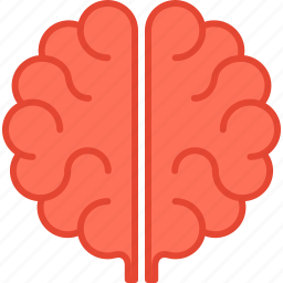 anatomy, brain, brainstorm, education, idea, intelligence, mind icon