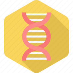 dna, genetics, genome, helix, heredity, medical, science icon