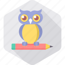 classes, classroom, education, owl, smart classes, smartclass, teacher icon