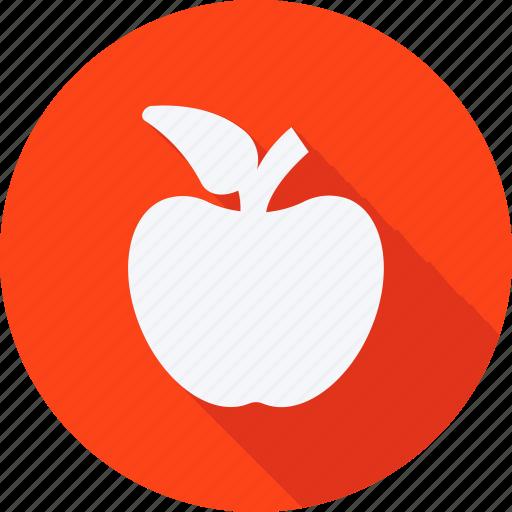 education, reading, school, schooling, student, study icon