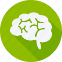 brain, education, reading, school, schooling, student, study icon