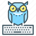 e - learning, education, online, online education, owl icon