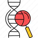 biology, dna, research, science, search icon