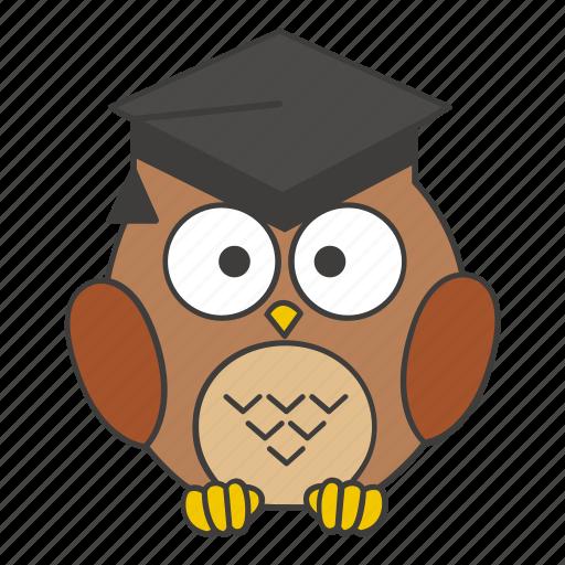 academic, book, education, graduate, graduation, owl, school icon