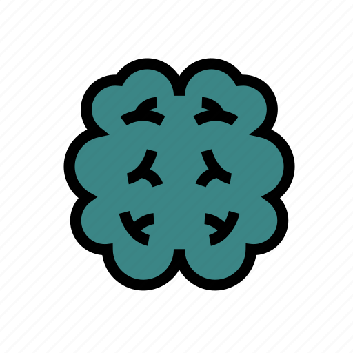 brain, education, mind, research, school, studying, thinking icon