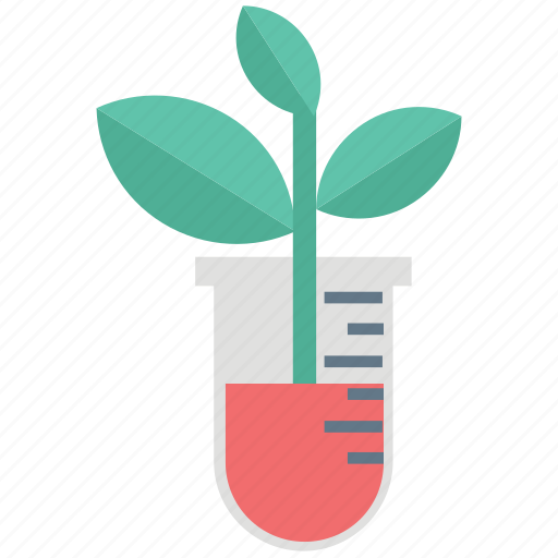 botany experiment, chemistry, experiment, lab research, laboratory, plant experiment, research icon