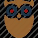 architecture, college, education, graduate, owl, school icon