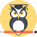 bird, education, intelligence, knowledge, owl, school, wisdom icon