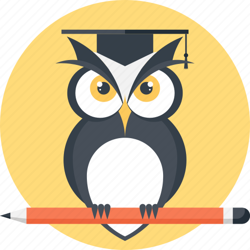 Bird, education, intelligence, knowledge, owl, school, wisdom icon - Download on Iconfinder
