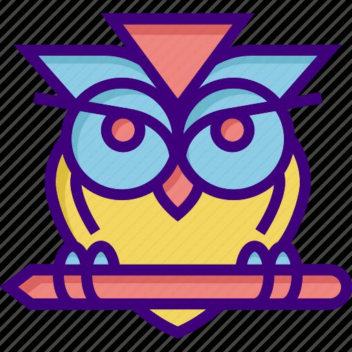 college, education, education owl, owl, school, science, wisdom icon