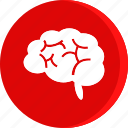 brain, education, human, school, schooling, science, study icon