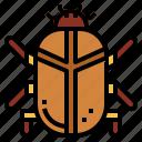 beetle, egypt, hieroglyph, shapes icon