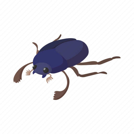 beetle, bug, cartoon, decoration, egypt, insect, scarab icon