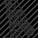 bird, falcon, mythology, traditional, egyptian