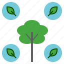 creation, green, leaf, natural, nature, tree icon