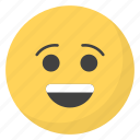 emoji, emotag, emoticon, emotion, smiley face icon