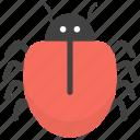 bug, flea, insect, mite, virus icon