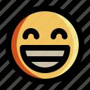emoji, emoticon, expression, face, feeling, happy, smiley