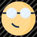 emoji, emoticon, emotion, geek, glasses, nerd, smirk